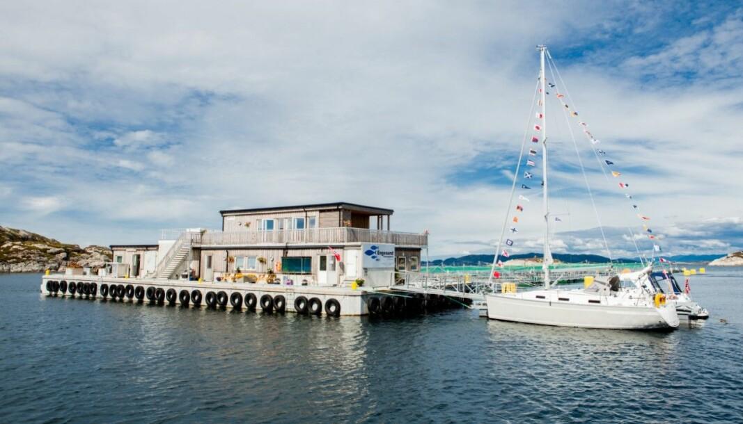 TA TUREN: Engesund Visningssenter på Fitjar har sommarope.